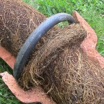 Tree-Root-Removal-2